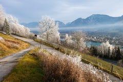 O branco geou árvores acima da grama, do vale e das montanhas no CCB Imagem de Stock Royalty Free