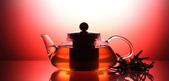 O bule com chá de erva, alecrim próximo, tiro do estúdio iluminou-se com vermelho Fotografia de Stock Royalty Free