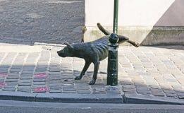 O cão Foto de Stock