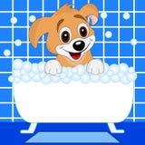 O cão alegre banha-se no banho Imagens de Stock