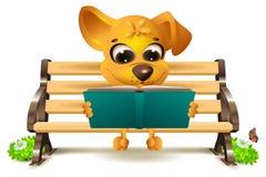 O cão amarelo senta-se no banco e lê-se o livro Fotos de Stock