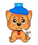 O cão bonito é doente um cachorrinho pequeno senta-se verticalmente, uma garrafa de água azul em sua cabeça, um termômetro em sua Foto de Stock