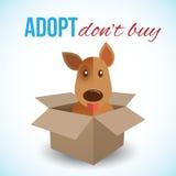 O cão bonito em uma caixa com Adopt não compra o texto Animais desabrigados conceito, tema da adoção dos animais de estimação Ilu Foto de Stock