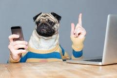 O cão com homem entrega usando o telefone celular e apontando acima Fotos de Stock Royalty Free