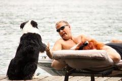 O cão cumprimenta o barqueiro Fotos de Stock