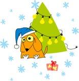 O cão de Fanny é árvore próxima do x-mas Fotografia de Stock Royalty Free