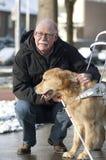 O cão de guia está ajudando um homem cego Imagem de Stock
