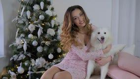 O cão do Natal, os abraços alegres da jovem mulher e o Samoyed das carícias perseguem na cama na árvore decorada fundo do Xmas video estoque
