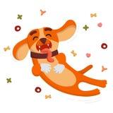 O cão engraçado bonito é de salto e de voo do alimento para cães Imagem de Stock