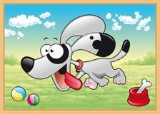 O cão está funcionando no prado Imagens de Stock Royalty Free