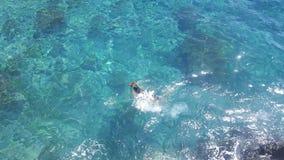 o cão feliz está nadando na água clara kristal imagem de stock royalty free