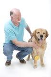 O cão ganhou uma medalha dourada Imagens de Stock Royalty Free