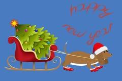 O cão leva a árvore de Natal imagens de stock royalty free