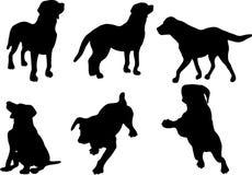 O cão mostra em silhueta a coleção Imagem de Stock Royalty Free