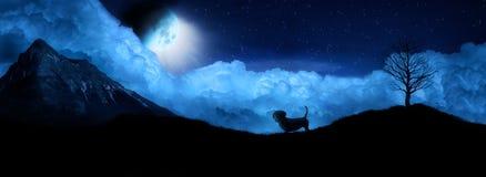 O cão olha a lua na silhueta da noite Imagens de Stock Royalty Free