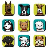 O cão produz ícones Fotos de Stock Royalty Free