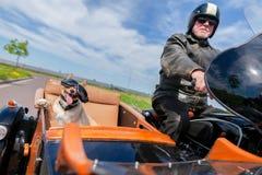 O cão senta-se com óculos de sol em um side-car da motocicleta fotografia de stock