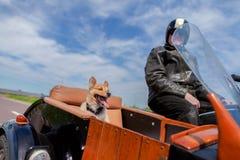 O cão senta-se em um side-car da motocicleta fotografia de stock royalty free
