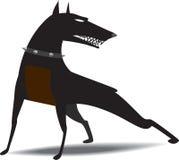 O cão snarled