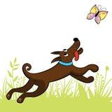 O cão trava uma borboleta ilustração stock