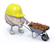 O cérebro com braços, pés e workhelmet leva um numbe do carrinho de mão Fotografia de Stock