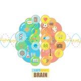 O cérebro esquerdo e direito borbulha conceito ilustração do vetor