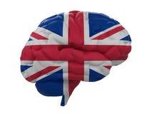 O cérebro humano é bandeira colorida de Reino Unido Fotografia de Stock