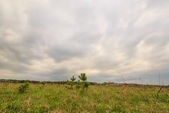O céu é cancelado após a chuva fotografia de stock