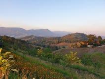 O céu, as montanhas, o vento, o sol é muito bonito em Phu Tupberk em Tailândia imagem de stock royalty free