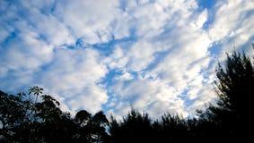 O céu azul Imagem de Stock