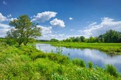 O céu azul da paisagem do rio do verão da mola nubla-se o campo imagens de stock royalty free