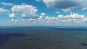 O céu azul de lapso de tempo nubla-se a flutuação sobre a floresta NC video estoque