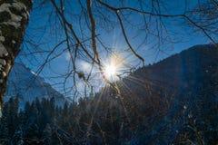O céu infinito do inverno nas montanhas, o sol está cegando imagem de stock