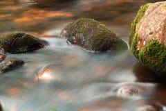 O córrego da água e do musgo cobriu rochas imagens de stock royalty free