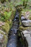 O córrego no vale superior de swansea, Gales do Sul de Rocky Mountain, Brecon ilumina Foto de Stock Royalty Free