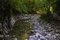 O córrego quieto transparente de um rio da montanha flui entre as rochas na sombra Fotos de Stock Royalty Free