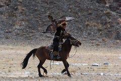 O caçador desconhecido com Eagle dourado mostra sua experiência na falcoaria Fotografia de Stock