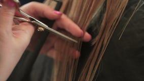O cabeleireiro corta uma mulher com cabelo louro longo Close up do corte de cabelo filme