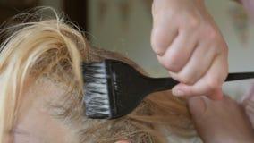 O cabeleireiro faz a coloração de cabelo no estúdio da beleza, a coloração profissional e os cuidados capilares, negócio da belez video estoque