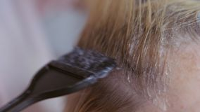 O cabeleireiro faz a coloração de cabelo no estúdio da beleza, a coloração profissional e os cuidados capilares, negócio da belez vídeos de arquivo