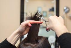 O cabeleireiro faz um corte de cabelo com as tesouras do cabelo a uma moça Imagens de Stock Royalty Free