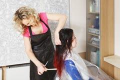 O cabeleireiro penteia a cabeça fotografia de stock