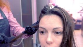 O cabeleireiro prepara straights aos escuros o cabelo marrom da mulher bonita que usa tenazes de brasa do cabelo no salão de bele vídeos de arquivo