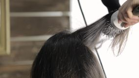 O cabeleireiro profissional faz o cabelo que denomina para o cliente fêmea bonito e o secador de cabelo usado com pente vídeos de arquivo