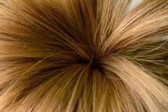 O cabelo de uma menina, amarrado sob a forma das palmeiras, e disparado no macro fotos de stock royalty free