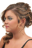 O cabelo e compo fotografia de stock royalty free