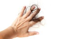 O cabelo perdido isolou-se fotos de stock royalty free