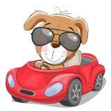 O cachorrinho bonito dos desenhos animados vai em um carro vermelho ilustração stock
