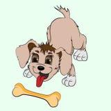 O cachorrinho pequeno olha o osso para o alimento ilustração stock