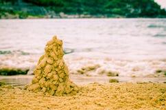 O cacto da areia Tree Foto de Stock
